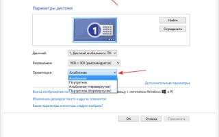 Инструкция: что делать, если не работает тачпад (сенсорная панель) на ноутбуке