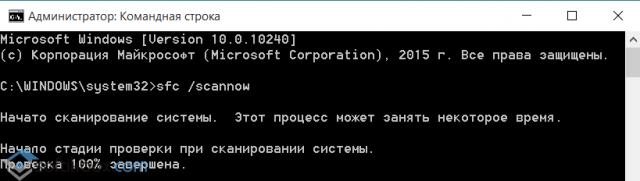 7cb41361-41d8-4222-9b46-222d0edcc72d_640x0_resize.png