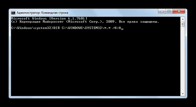 Primenenie-komandyi-DIR-s-atributami-cherez-interfeys-komandnoy-stroki-v-Windows-7.png
