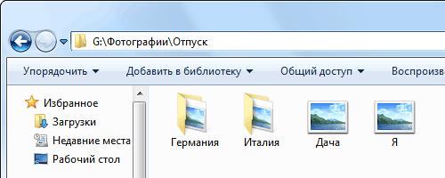tree_folder.png