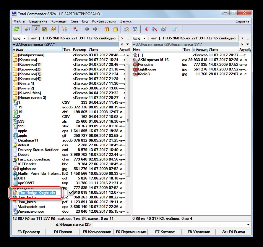 Naimenovanie-fayla-dostupno-dlya-izmeneniy-v-programme-Total-Commander.png