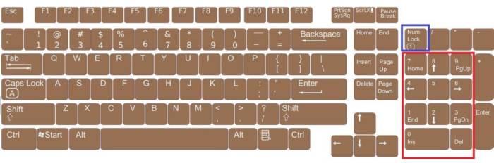 noutbuk-malaja-cifrovaja-klaviatura.jpg