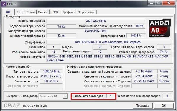 yadra-1.jpg