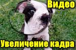 Videoobrabotka-uvelichenie-kadra.png