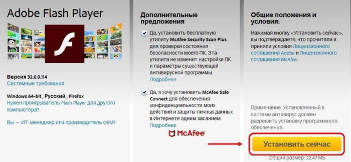 net-video-1.jpg