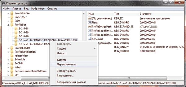 rename-profile-entry-registry.png