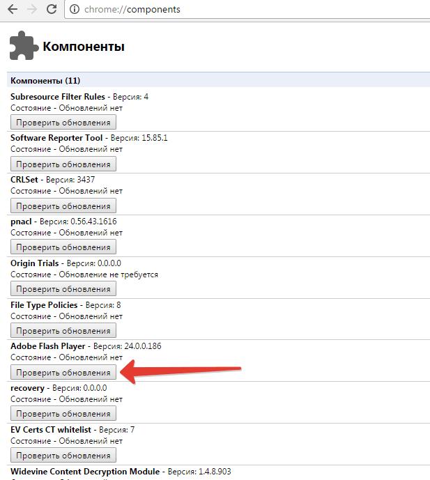 12-proverka-obnovleniya-Adobe-Flash-Player.png