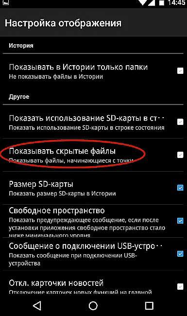 Skritiy8.jpg