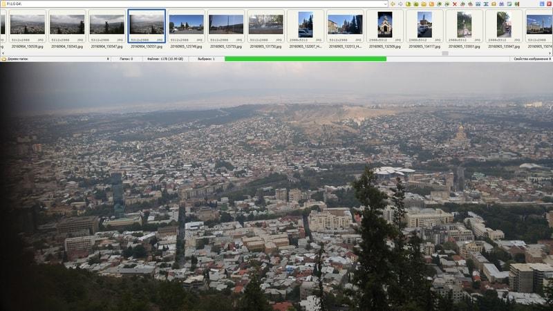 vybor-foto-v-FastStone-Image-Viewer.jpg