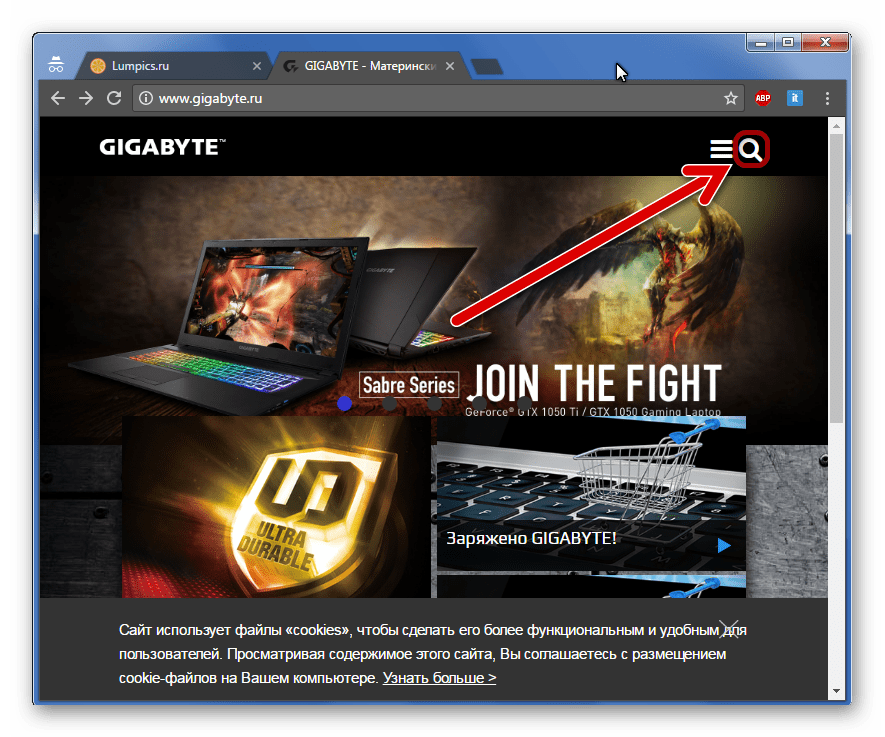 poisk-na-sayte-gigabyte.png