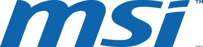 msi-logo.jpeg