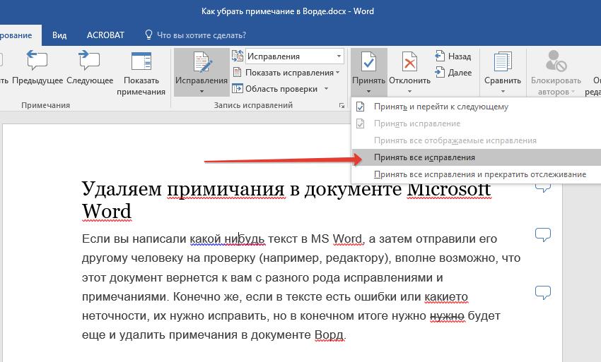 prinyat-ispravleniya-v-Word.png