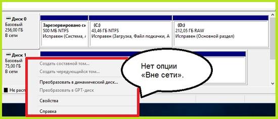 _____Windows_2.jpg