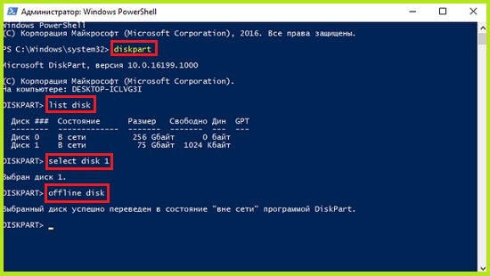 _____Windows_3.jpg