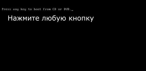 otsutstvuet_fajl_System324.jpg